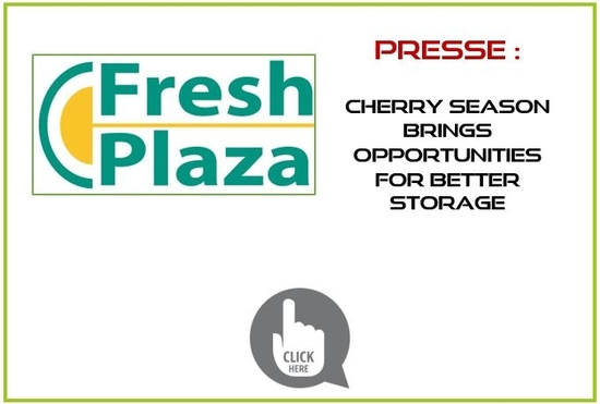 Article Fresh Plaza -