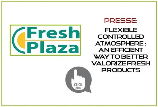 Article Fresh Plaza -