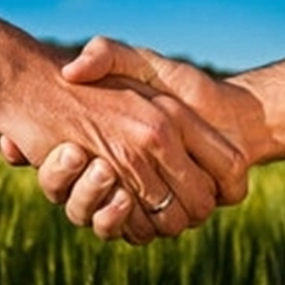 Añadir valor a la agricultura