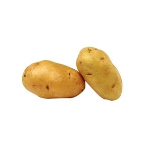 neue kartoffel